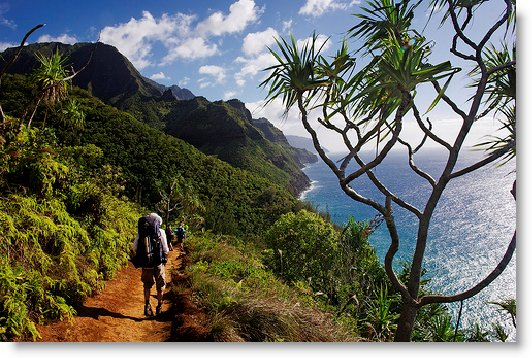 Kirk In Kauai